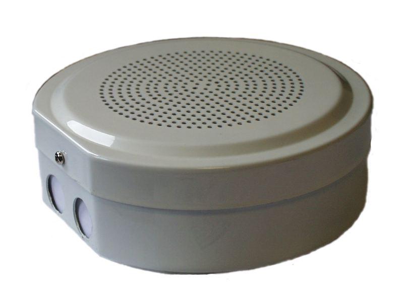 Voice Alarm Loud Speaker Metal Cabinet DNH SAFE-561T